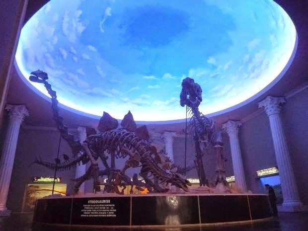 Museum Satwa di jawa timur park tempat wisata di malang
