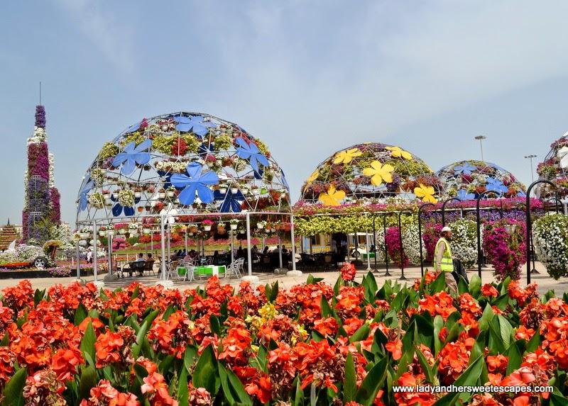 Dubai Miracle Garden 2014