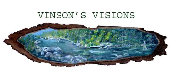 Vinson's Visions