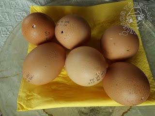 Szöveg: Bevetésre várva. Kép: 6 darab kifújt tojás egy sárga szalvettával letakart tányéron.