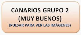Canarios Grupo 2 (MUY BUENOS)
