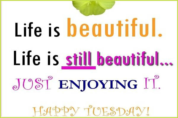 happy-tuesday-morning-wishes-message-wallpapers