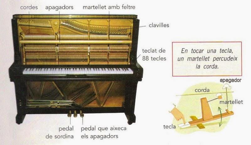 Corda percudida musical ndia for Piani domestici di alan mascord