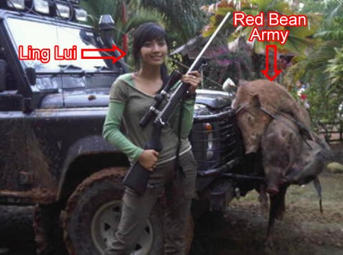 red-bean-army-pig