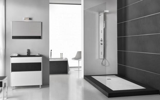 Reforma o cambio de bañera por un plato de ducha adecuado