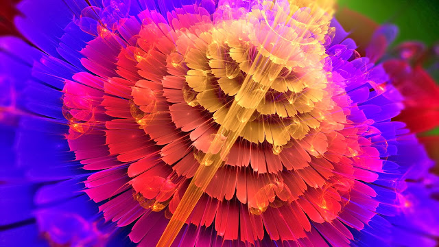 Abstraction flowers red blue petals colors HD Wallpaper