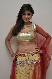 Sony Charista Spicy Golden Choli Low Rise Ghagra Transparent Dupatta at Seenugadi love story audio launch
