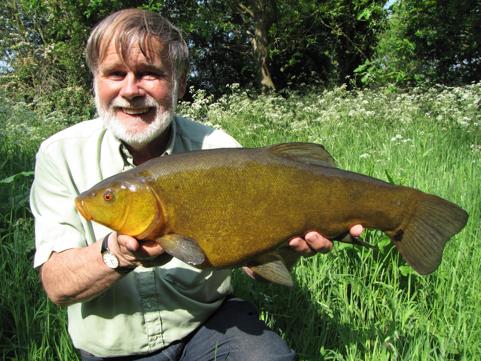 Travelling Man: The world of a tench fisher.