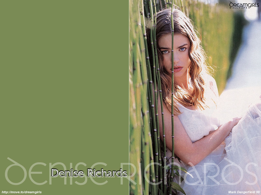 http://3.bp.blogspot.com/-f7NVs0lNplA/TfW42XcX_KI/AAAAAAAAAQI/8mjXa9XwGLI/s1600/denise_richards_004.jpg