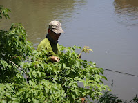 TroutDawg on the stalk while fly fishing for carp