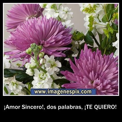 Imágenes con Frases en Inglés - soloimagenesde.com