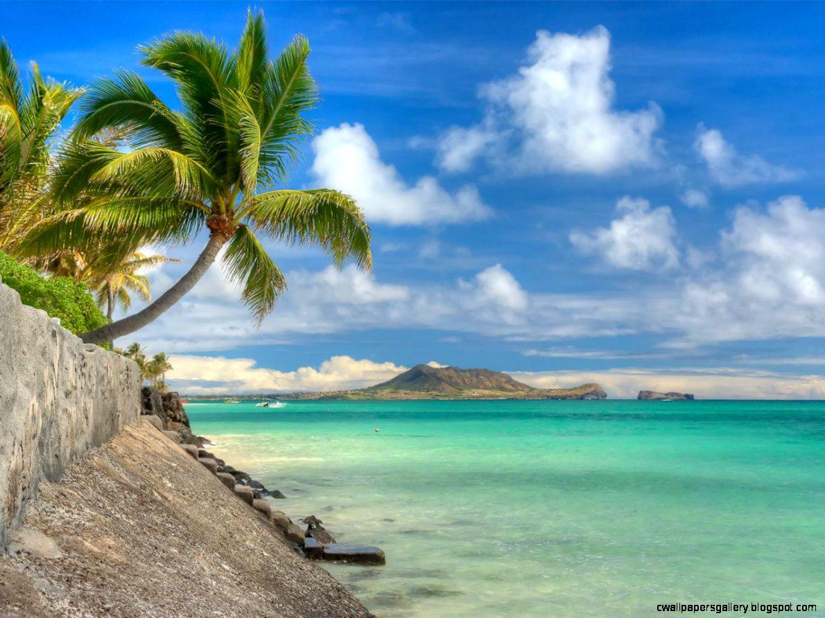 Top 10 Hawaiian Beaches Beaches Travel Channel