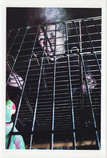 dirty photos - noah's ark fauna photo of old lady with parrot in a cage