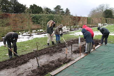 making progress on the Beningbrough Hall allotment