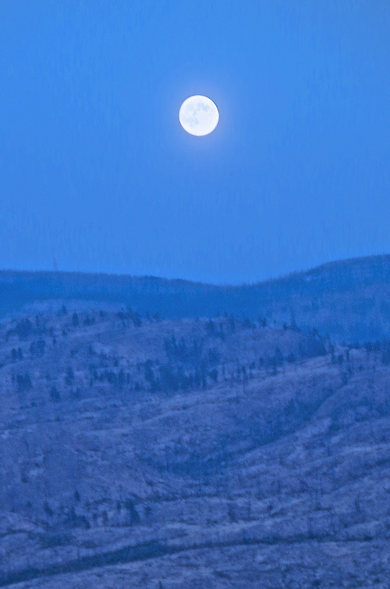 view of the Supermoon, Peachland, BC
