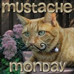 mustache monday