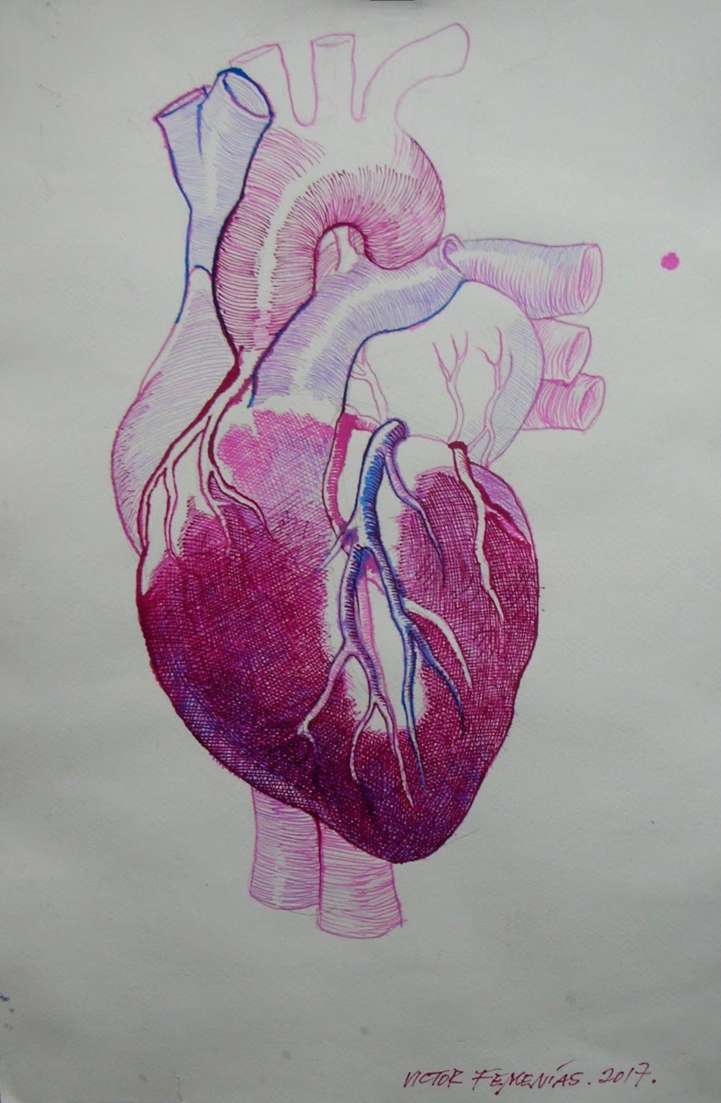 De todo corazón II
