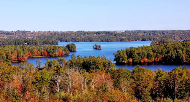 Damariscotta Lake foliage
