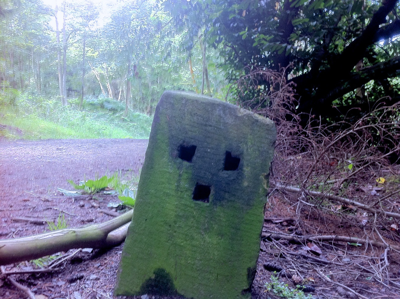 Minecraft Creeper In Real Life Sad real life creeper