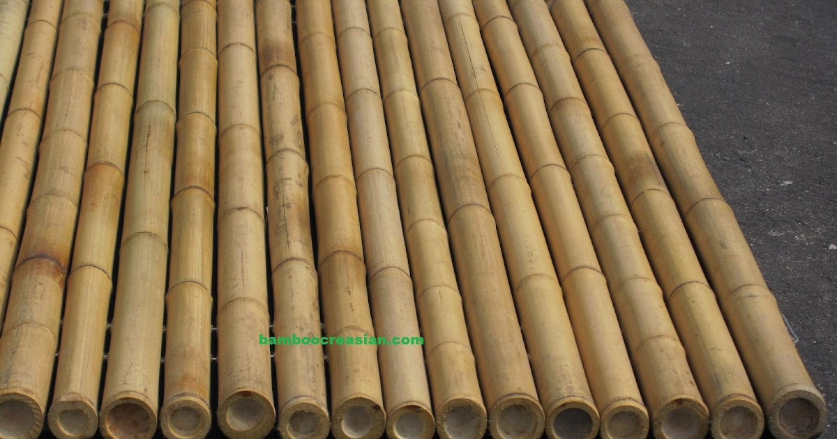 Quality Bamboo And Asian Thatch Bamboo Panels For