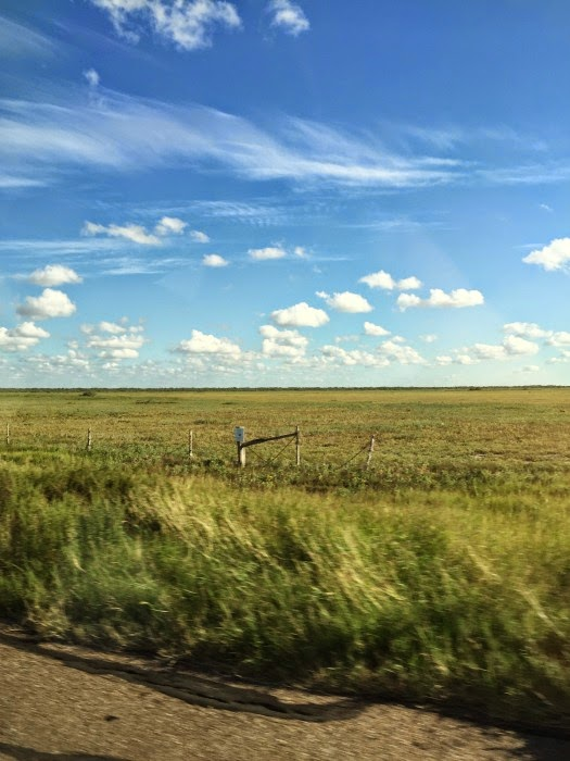 Blue skies and green grass during a road trip to South Padre Island Texas