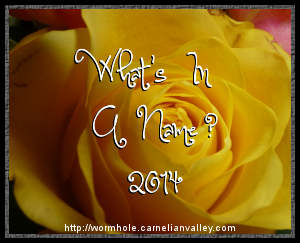 What's In A Name 2014?