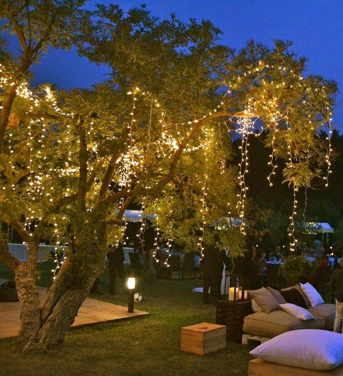 Quinta pavo real del rincon jard n de eventos bodas en for Como iluminar arboles en el jardin