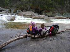 Franconia Falls.  November 2009