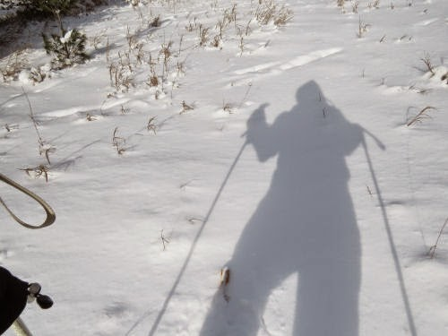 snowshoeing shadow