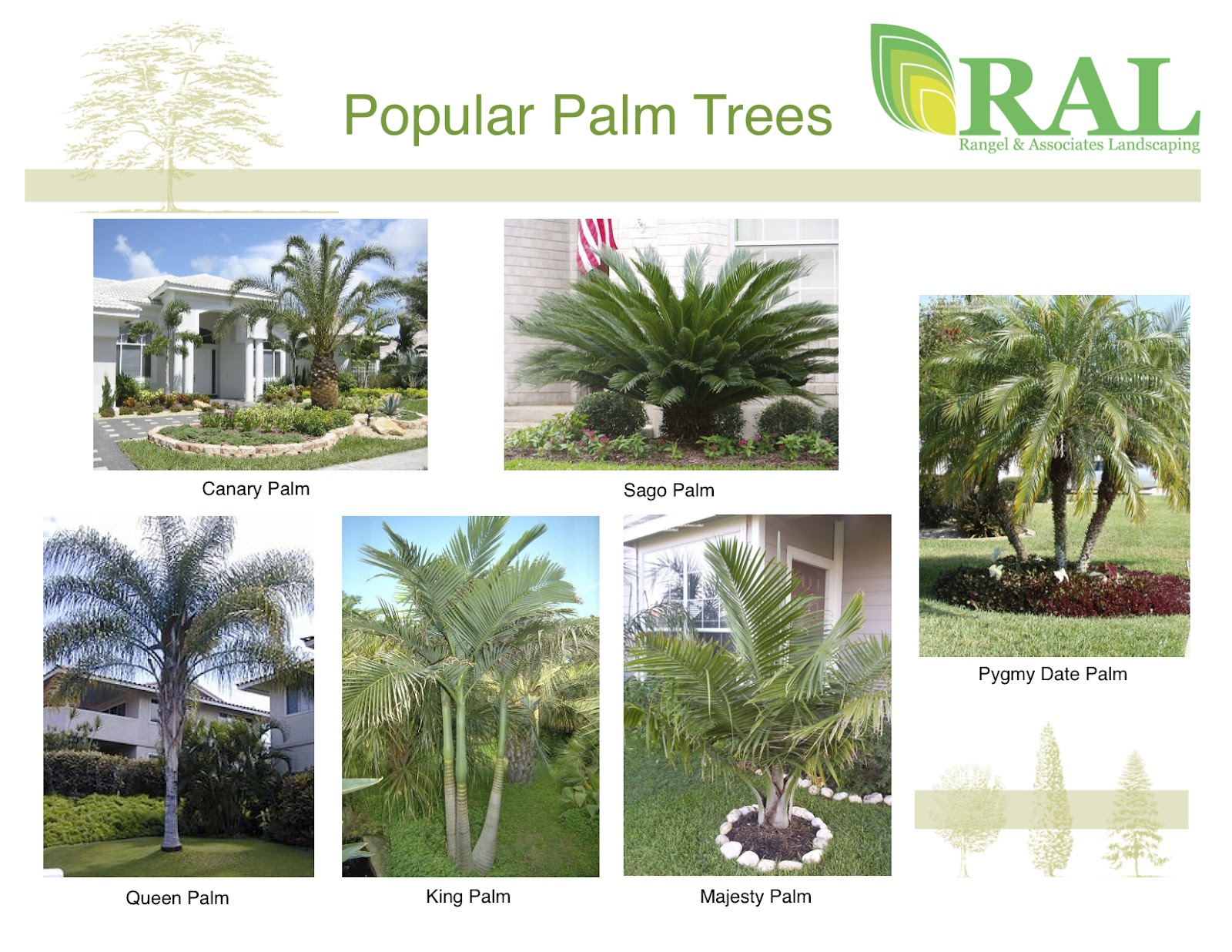 Rangel Amp Associates Landscaping BLOG
