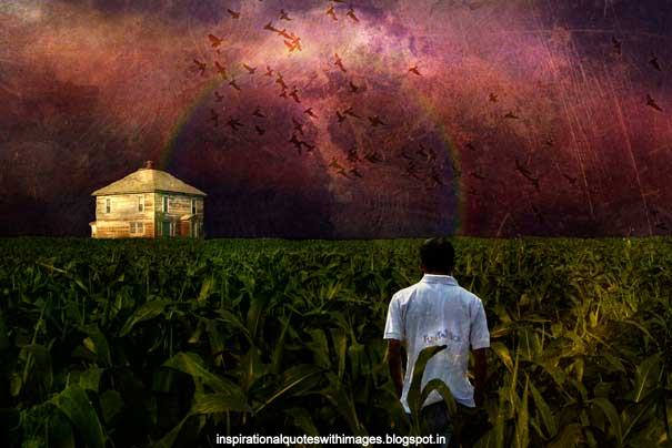 facts about dreams corn fields