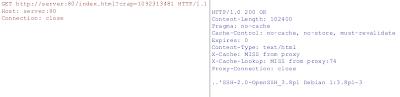 http tunnel proxy server hack