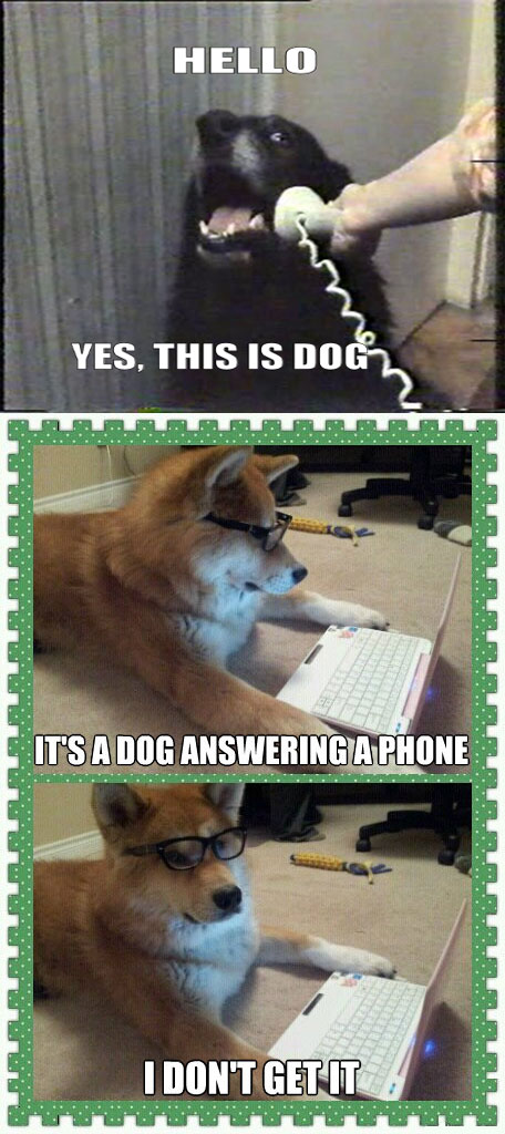 Yes This Is Dog - It's A Dog Answering A Phone - I Don't Get It