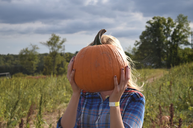 fall pumpkin