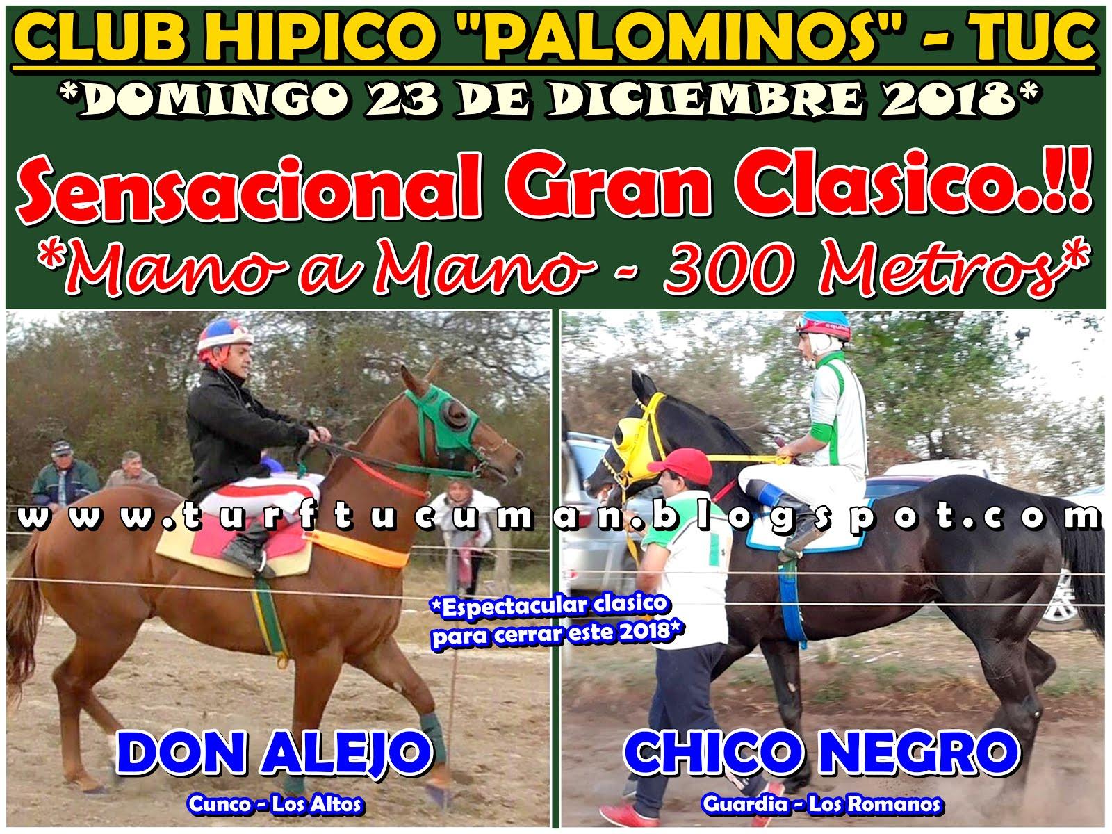 ALEJO VS CHICO NEGRO