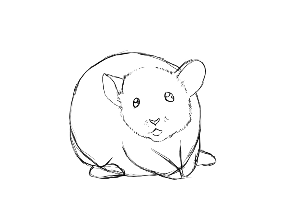 How to draw a mouse draw central for How do you draw a mouse