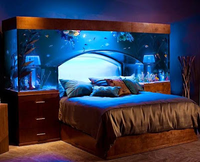 amazing built in aquarium bed