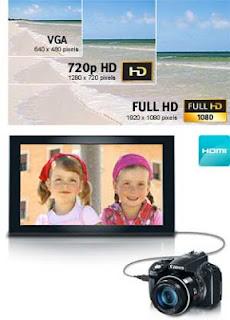 Canon SX50 vs Canon SX20