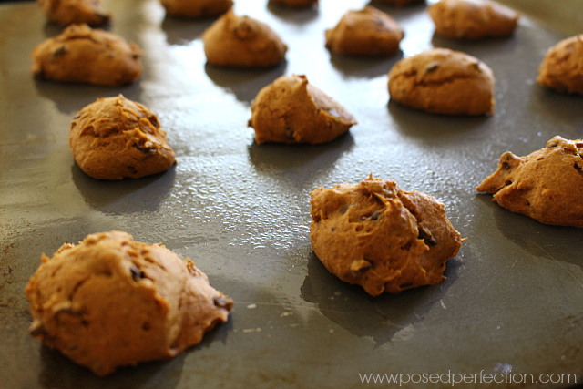 All the Flavors of Fall wrapped up in these Impossibly Easy 4-Ingredient Pumpkin Chocolate Chip Cookies!