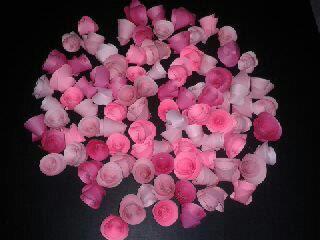 EYJA HEBAT: Tutorial : Cara-cara membuat pokok bunga hiasan.