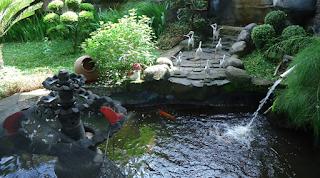 Taman Rumah Minimalis Paling Indah dan Asri Terbaru