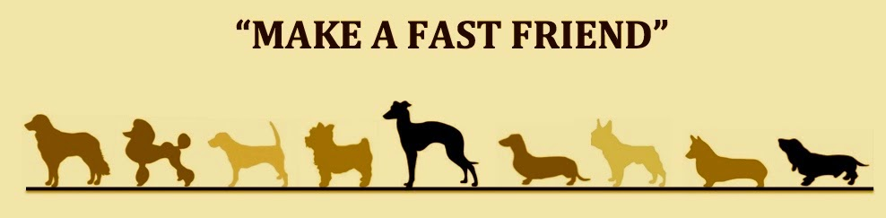 """Make a fast friend"""