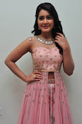 rashi khanna at Bengal tiger audio-thumbnail-13