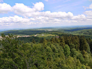 Blick vom Mahlbergturm Richtung Rodungsinseln im Nordosten