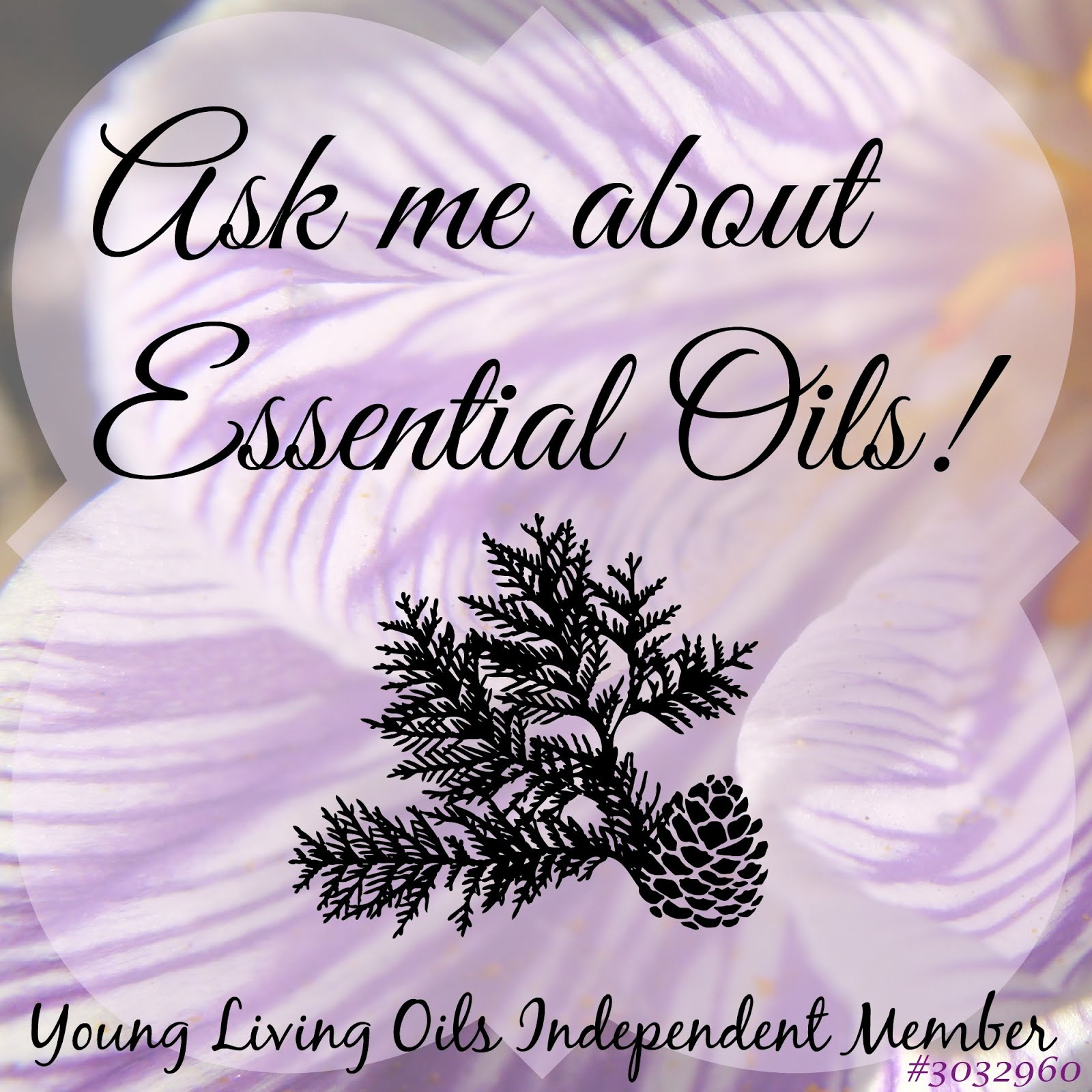 Young Living Pretty Oil Team Member 3032960