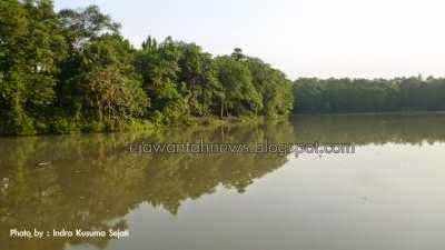 http://ejawantahnews.blogspot.com/2014/08/menikmati-danau-rawa-dongkal-cibubur.html