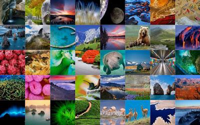 Las mejores imágenes de Bing