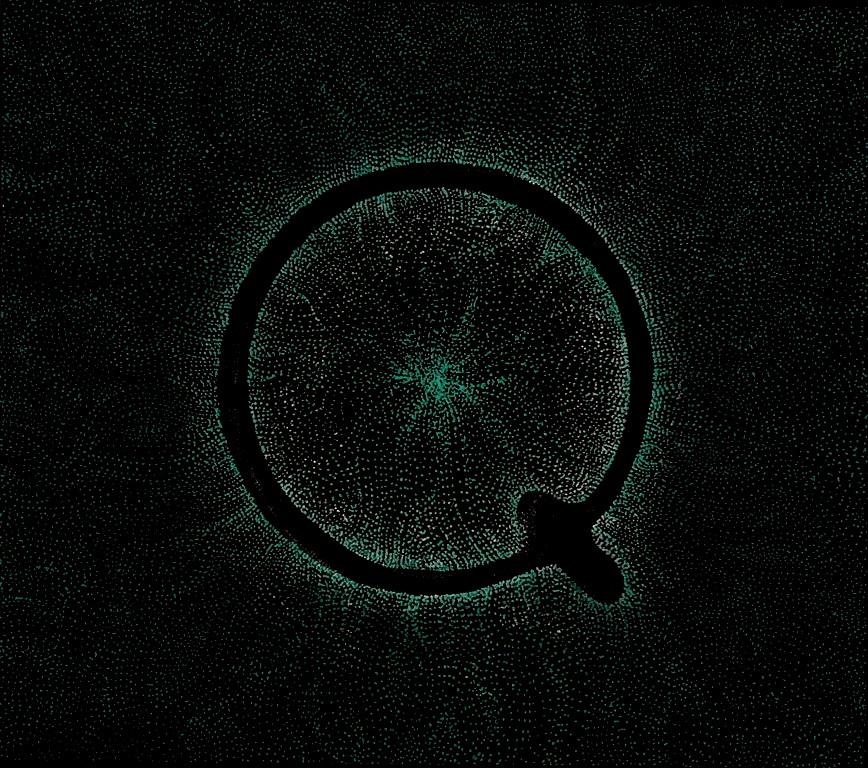 Vos derniers achats Q_self+titled_+CD