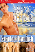 Tides of Love 1: Saving Connor