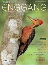 Suara Enggang - Malaysia's premier birding magazine!